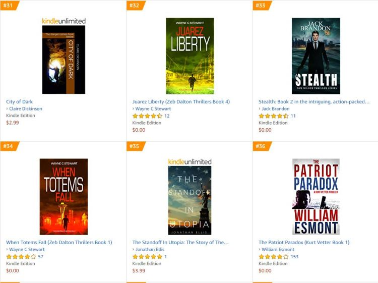 N°31 in the Political Thrillers & Suspense bestsellers list on http://Amazon.com   (June 13, 2019)